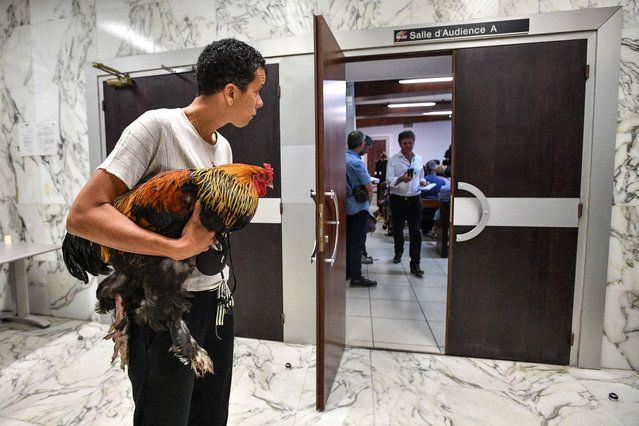 A woman holds a rooster inside the high court (Tribunal de Grande Instance) on July 4, 2019, where the justice is set to rule on whether a lively cockerel should be considered a neighbourly nuisance in a case that has led to shreiks of protest in the countryside. (Photo by Xavier Leoty/AFP Photo)