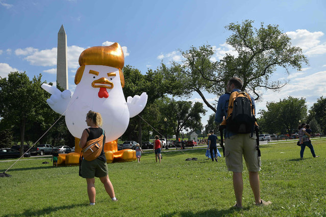 An inflatable chicken mimicking US President Donald Trump is set up on The Ellipse,  a 52-acre (21-hectare) park located just south of the White House and north of the Washington Monument (rear) on August 9, 2017. (Photo by Mandel Ngan/AFP Photo)