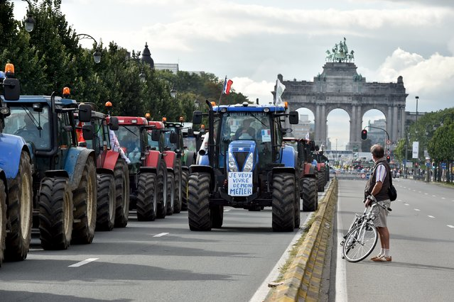 A cyclist looks at tractors in central Brussels as farmers and dairy farmers from all over Europe take part in a demonstration outside a European Union farm ministers' emergency meeting at the EU Council headquarters in Brussels, Belgium September 7, 2015. (Photo by Eric Vidal/Reuters)