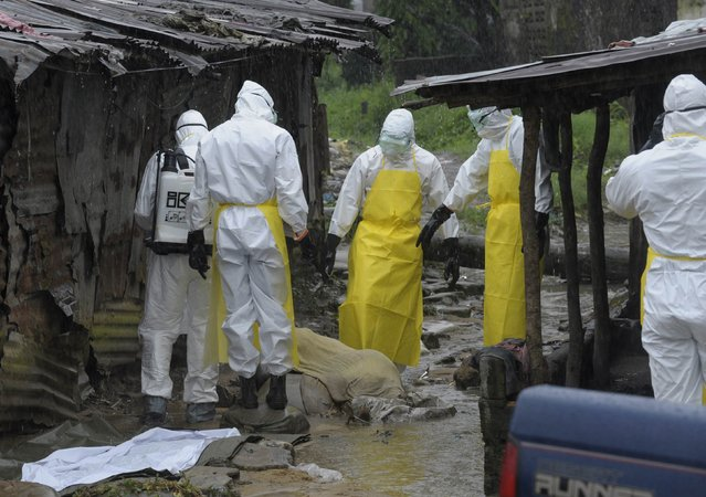 Health workers wearing protective clothing prepare to carry an abandoned dead body presenting with Ebola symptoms at Duwala market in Monrovia, Liberia, in this August 17, 2014 file photo. (Photo by Reuters/2Tango)