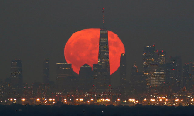 The full Blue Moon and Hunter's Moon rises behind lower Manhattan and One World Trade Center in New York City on Halloween on October 31, 2020 as seen from Greenbrook Township, New Jersey. (Photo by Gary Hershorn/Getty Images)