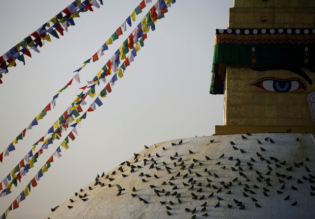 Pigeons rest on the dome of Boudhanath stupa during the opening of the stupa, which underwent renovation after suffering damage during the 2015 earthquake, in Kathmandu, Nepal November 22, 2016. (Photo by Navesh Chitrakar/Reuters)