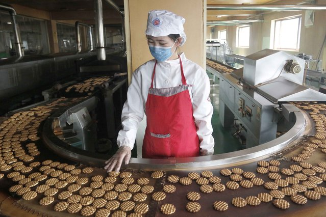 An employee monitors a cookie conveyor belt at the Unha Taesong Foodstuff Factory Tuesday, April 6, 2021, in Pyongyang, North Korea. (Photo by Jon Chol Jin/AP Photo)