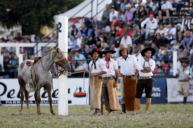 Gauchos look on as other rides a wild horse during the annual celebration of Criolla Week in Montevideo, March 31, 2015. (Photo by Andres Stapff/Reuters)
