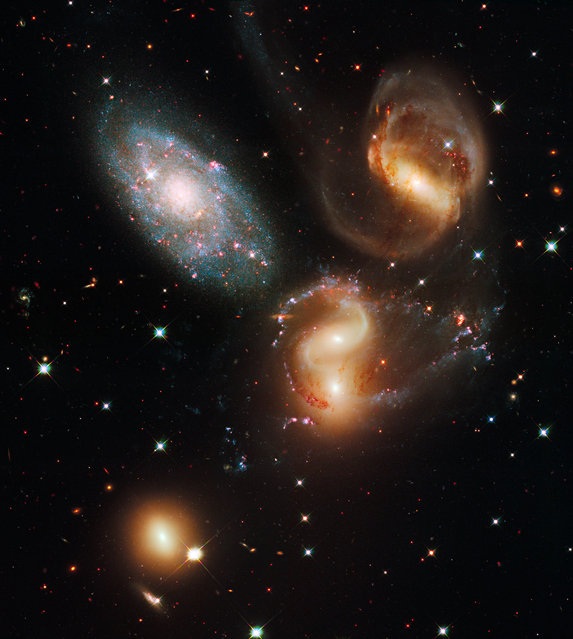 This image made by the NASA/ESA Hubble Space Telescope shows a group of five galaxies known as Stephan's Quintet. Three of the galaxies have distorted shapes, elongated spiral arms, and long, gaseous tidal tails containing myriad star clusters, proof of their close encounters. But studies have shown that group member NGC 7320, at upper left, is actually a foreground galaxy that is about seven times closer to Earth than the rest of the group. (Photo by NASA/ESA/Hubble SM4 ERO Team via AP Photo)