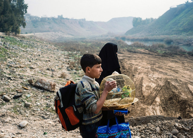 An Iraqi boy carries a cage with songbirds as he walks on a makeshift river crossing next to a bridge which was destroyed by Islamic State (IS) group fighters in Mosul' s al- Sukkar neighbourhood, during the ongoing military operation against the jihadists, on January 21, 2017 Iraqi forces battled the last holdout jihadists in east Mosul after commanders declared victory there and quickly set their sights on the city' s west, where more tough fighting awaits. (Photo by Dimitar Dilkoff//AFP Photo)