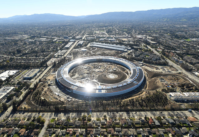 The Apple Campus 2 is seen under construction in Cupertino, California in this aerial photo taken January 13, 2017. (Photo by Noah Berger/Reuters)