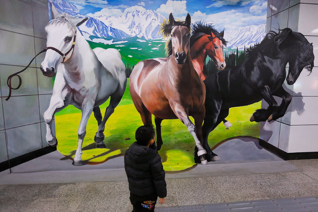 A child watching 3D horse painting is on display at a subway station on January 19, 2014 in Beijing, China. The Chinese Lunar New Year of  horse also known as the Spring Festival, which is based on the Lunisolar Chinese calendar, is celebrated from the first day of the first month of the lunar year and ends with Lantern Festival on the Fifteenth day. (Photo by Lintao Zhang/Getty Images)