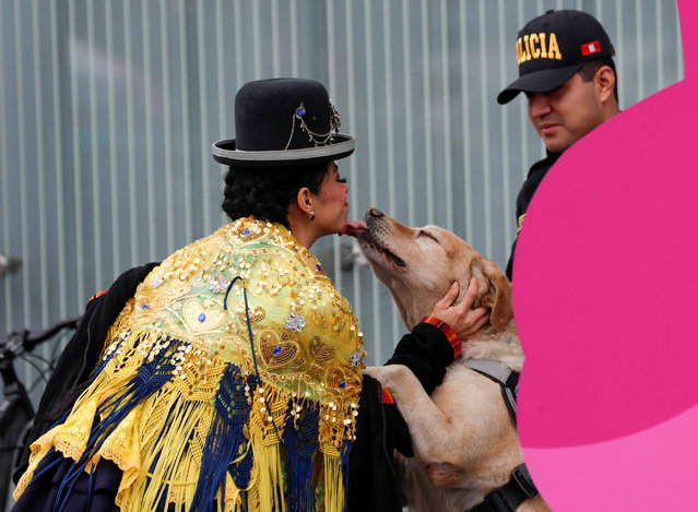 Peruvian dancer from the Andean city of Puno plays with a sniffer dog as a police officer stands guard outside the media center, ahead of the 2019 Pan American Games in Lima, Peru, July 24, 2019. (Photo by Henry Romero/Reuters)