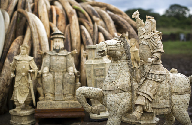 Ivory statues stand in front of one of around a dozen pyres of ivory, in Nairobi National Park, Kenya Thursday, April 28, 2016. (Photo by Ben Curtis/AP Photo)