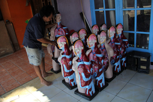 A craftsman completes spruce human anatomy mannequins on April 23, 2014 in Depok, West Java, Indonesia. The mannequins are made from fiberglass and will be used in schools, hospitals and laboratories. (Photo by Nurcholis Anhari Lubis/Getty Images)