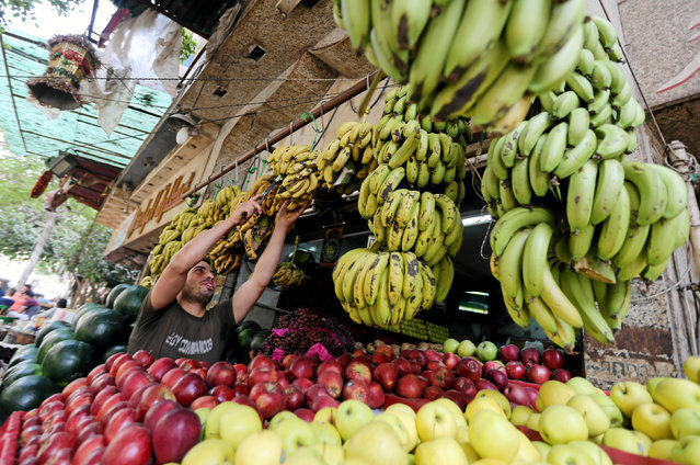 An Egyptian fruits seller is seen at a market in Cairo, Egypt May 10, 2016. (Photo by Mohamed Abd El Ghany/Reuters)