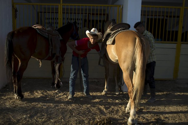 Veterinary student Adonis Dias, 16, prepares a horse for a competition during the International Livestock Fair Show in Havana, March 16, 2015. (Photo by Alexandre Meneghini/Reuters)