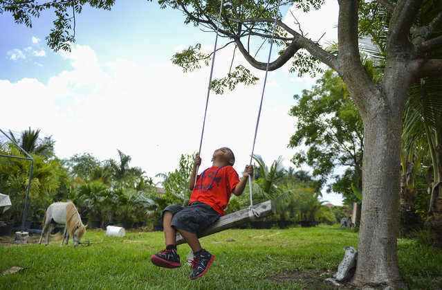 Daniel Chavez, 7, smiles while swinging at the home of Nora Sandigo-Otero, who was holding a luncheon for children that she holds guardianship over on June 7, 2014 in Miami, Fl. Santigo founded American Fraternity which mainly serves the Latino community with living expenses, food and legal services. (Photo by Ricky Carioti/The Washington Post)
