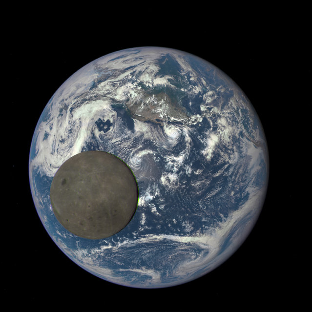 The far side of the moon, illuminated by the sun as it crosses between the DSCOVR spacecraft's Earth Polychromatic Imaging Camera (EPIC) camera and telescope, and the earth – one million miles away – July 16, 2015. (Photo by Reuters/NASA/NOAA)