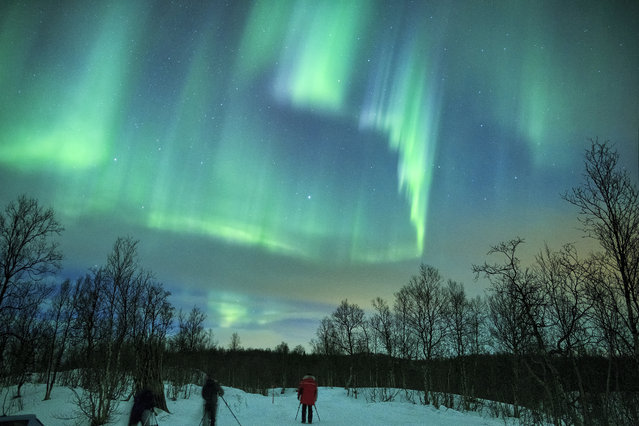 The Aurora Borealis seen across the sky in Lapland, Finland. The beautiful phenomenon was captured by photographer Marko Korosec on a trip to the arctic region of Lapland in Northern Finland. He used long exposures on his Canon DSLR to create the stunning images. (Photo by Marko Korosec/Barcroft Media)