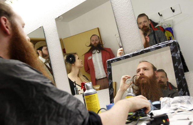 Participants style their beards for the Beard World Championship 2013 in Leinfelden-Echterdingen near Stuttgart November 2, 2013. More than 300 people from around the world compete in different moustache and beard categories. (Photo by Michaela Rehle/Reuters)