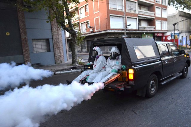 A handout picture provided by the District of Montevideo shows municipal health workers participating in the first day of fumigations in Montevideo, Uruguay, 24 February 2016, as part of a plan to fight against the mosquito Aedes Aegypti which transmits the Zika virus and dengue fever. Montevideo has reported two of the nine cases that have been registered in the country. (Photo by Artigas Pessio Vignolo/EPA)