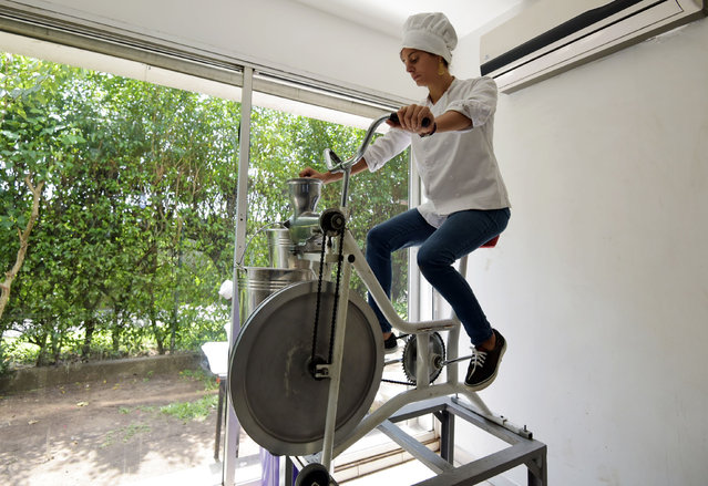 """Dana Mroueh, owner of the handmade organic raw chocolate factory """"Mon Choco"""", uses a bicycle to grind cocoa beans at her chocolate factory in Abidjan, on March 27, 2019. Ivorian Dana Mroueh, of French-Lebanese descent, created the organic chocolate factory """"Mon Choco"""" three years ago, where cocoa beans are processed with the help of a bicycle to have a minimal impact on environment. Ivory Coast leads the world in production and export of the cocoa beans. (Photo by Sia Kambou/AFP Photo)"""