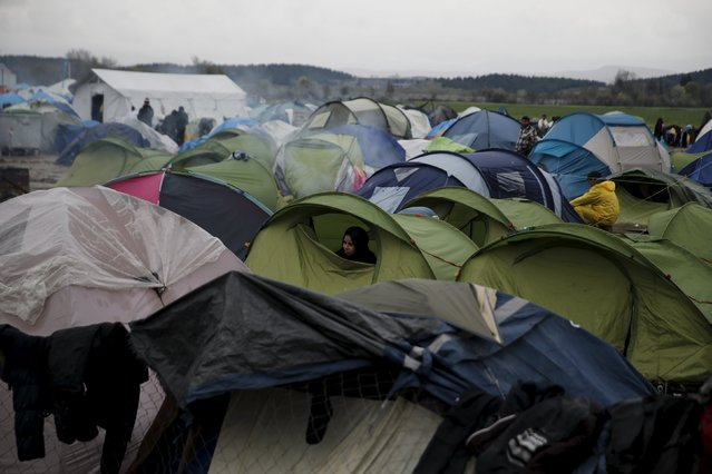 A migrant woman looks from inside a tent, at a makeshift camp at the Greek-Macedonian border, near the village of Idomeni, Greece March 15, 2016. (Photo by Alkis Konstantinidis/Reuters)