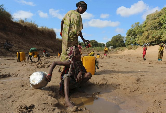 People collect water from shallow wells dug along the Shabelle River bed, which is dry due to drought in Somalia's Shabelle region, March 19, 2016. (Photo by Feisal Omar/Reuters)