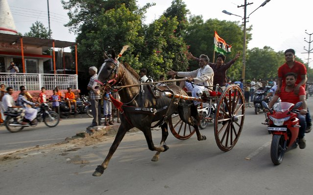 Participants ride a horse cart during a horse cart race organised every Monday during the Shravan month of the Hindu calendar, in Allahabad, India, August 3, 2015. The race, a traditional way to demonstrate a horse's performance, is held in an area of about 1 km and occasionally the best horses are bought by interested customers after the race. (Photo by Jitendra Prakash/Reuters)