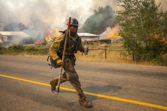 A firefighters flees as the Twisp River fire advances unexpectedly near Twisp, Washington August 20, 2015. (Photo by David Ryder/Reuters)
