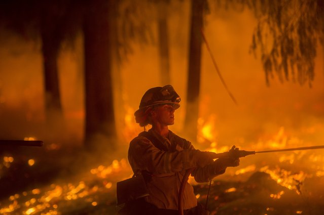 A firefighter battling the King Fire sprays water on a backfire in Fresh Pond, California September 17, 2014. Fire crews in California's rugged Sierra Nevada battled to gain the upper hand on Wednesday against a blaze that threatened at least 2,000 homes and has displaced hundreds of residents as flames roared for a fifth day through dry timber and brush west of Lake Tahoe. (Photo by Noah Berger/Reuters)