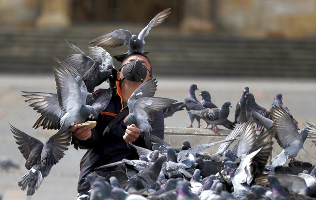 A man wearing a protective face mask feeds a flock of pigeons at Bolivar Square in Bogota, Colombia, Tuesday, July 21, 2020, amid the new coronavirus pandemic. (Photo by Fernando Vergara/AP Photo)