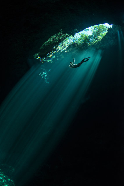"""""""Diving 'The Pit' in the Mexican jungle"""". A freediver reaching back up to the surface in """"The Pit"""", which is an amazing cenote sinkhole deep inside jungle in the Yucatan Peninsula in Mexico. Cenotes were sometimes used by the ancient Maya for sacrificial offerings. Photo location: the Pit cenote, Yucatan Peninsula, Mexico. (Photo and caption by Danny Kessler/National Geographic Photo Contest)"""
