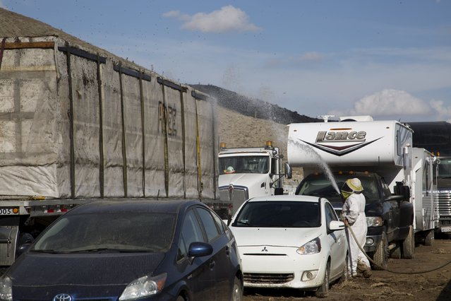 A beekeeper sprays water to cool bees flying around a trailer full of beehives as cars and trucks remain mired on State Route 58 near Tehachapi, California, about 60 miles (97 km) outside of Los Angeles, October 17, 2015. (Photo by David McNew/Reuters)