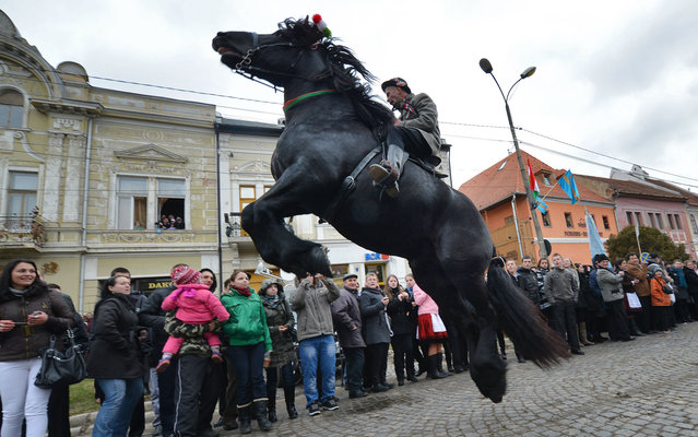 A man rides a horse during a parade on Hungary's National Day in Targu Secuiesc (250km north of Bucharest) on March 15, 2013. Thousands of ethnic Hungarians from the central Transylvanian region of Romania gather in a celebration in Targu Secuiesc to mark the 1848 Hungarian Revolution. (Photo by Daniel Mihailescu/AFP Photo)