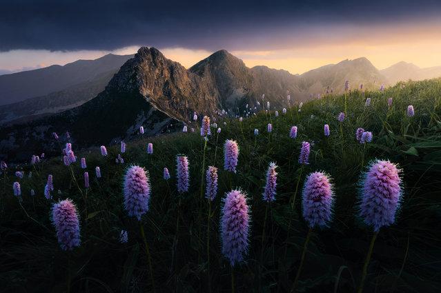 Youth prize, winner. Farewell to the Sun by Filip Hrebenda, taken in Western Tatras, Slovakia. (Photo by Filip Hrebenda/REDISCOVER Nature/EEA)