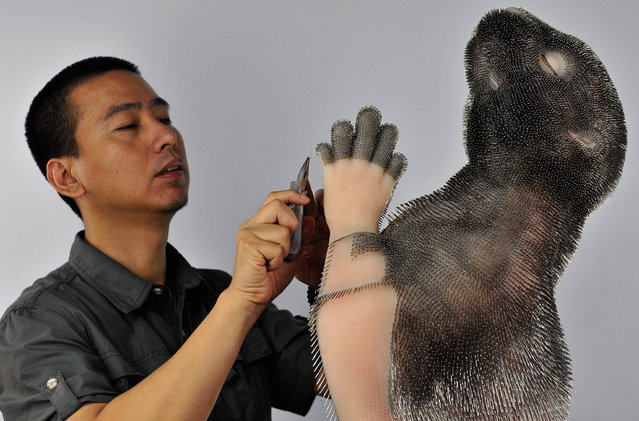Professor Xie Yong works on an art installation of a beaver, which is made out of plastic and around 300,000 needles, in Shenyang, Liaoning province, July 23, 2013. The needles, according to Xie, represent the pain felt by animals when their fur is taken off to produce clothing. (Photo by Reuters/Stringer)