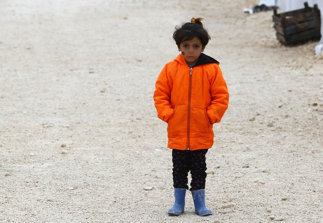 A Kurdish refugee girl from the Syrian town of Kobani stands in front of tents at a refugee camp in the border town of Suruc, Sanliurfa province January 31, 2015. (Photo by Umit Bektas/Reuters)