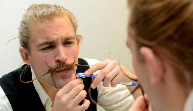 Felix Hammoser uses a toothbrush to style his beard as he prepares for the Beard World Championships on November 2, 2013 in Leinfelden-Echterdingen, southern Germany. More than 200 competitors from over 20 countries will take part in the event. (Photo by Franziska Kraufmann/AFP Photo/DPA)