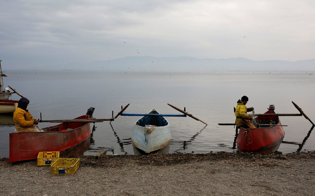 Fishermen collect their catch from nets at Dojran Lake, Macedonia, January 4, 2017. (Photo by Ognen Teofilovski/Reuters)
