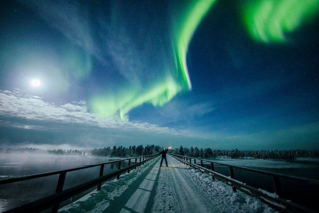 The Aurora Borealis (Northern Lights) is seen over the sky near Inari in Lapland, Finland February 14, 2019. (Photo by Alexander Kuznetsov/Reuters)