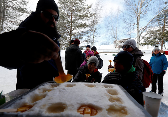 A family from Gatineau stop to taste maple taffy while skating at the Domaine de la Foret Perdu or the Lost Forest, a 15km weaving and zambonied forest trail made for skating in Notre-Dame-du-Mont-Carmel, near Three Rivers, Quebec January 29, 2017. (Photo by Christinne Muschi/Reuters)