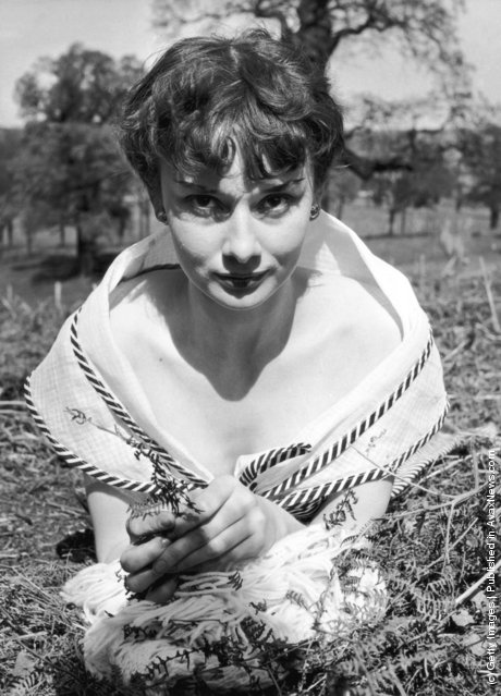 1950: Audrey Hepburn in Richmond Park