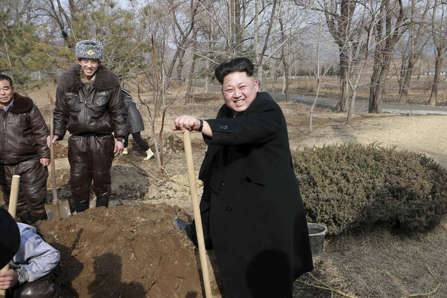 North Korean leader Kim Jong Un (R) smiles as he plants trees with fighter pilots from Unit 447 of the Korean People's Army (KPA) Air and Anti-Air Force honoured with the title of O Jung Hup-led 7th Regiment, in this undated photo released by North Korea's Korean Central News Agency (KCNA) in Pyongyang March 3, 2015. (Photo by Reuters/KCNA)