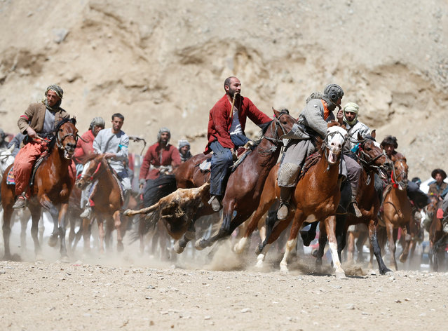 Afghan horsemen compete during a Buzkashi game in Panjshir province, north of Kabul, Afghanistan April 7, 2017. (Photo by Omar Sobhani/Reuters)