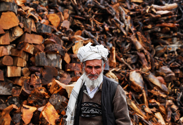 A vendor waits for customers at his firewood stall in Kabul, Afghanistan on November 21, 2019. (Photo by Mohammad Ismail/Reuters)