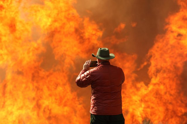 A man photographs flames with a smart phone at a wildfire dubbed the Cave Fire, burning in the hills of Santa Barbara, California, November 26, 2019. Wind-driven flames raced down wooded hillsides toward Santa Barbara, California, sending around 5,500 residents fleeing as firefighters battled to save homes before expected relief from rain. (Photo by David McNew/Reuters)