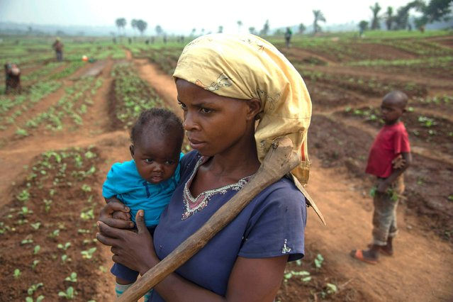 A Congolese woman and her child, who fled from rebel group attacks, stand in a field farmed with the help of the Food and Agricultural Organisation of the United Nations (FAO) in Tshikapa in the Kasai Region, Democratic Republic of Congo, on July 27, 2017. For the past nine months, Kasai, a deeply-impoverished region in central Democratic Republic of Congo, has been plagued by bloodshed that has killed over 3,000 people and forced 1.3 million to flee. The unrest has its roots in dispute between a local traditional leader, known as the Kamwina Nsapu, and the government of President Joseph Kabila which began in early 2016. (Photo by Junior D. Kannah/AFP Photo)