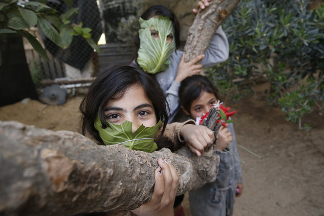 Palestinian children pose with makeshifts masks made of cabbage while cooking at home with their family in Beit Lahia in the northern Gaza Strip on April 16, 2020 amid the coronavirus COVID-19 pandemic. (Photo by Mohammed Abed/AFP Photo)