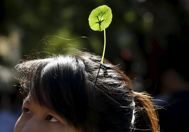 A woman wearing a sprout like hairpin makes her way in Beijing, China, September 25, 2015. Wearing antenna styled hairpins in the shape of various flowers and plants at scenic spots has become a new trend in Beijing. (Photo by Kim Kyung-Hoon/Reuters)
