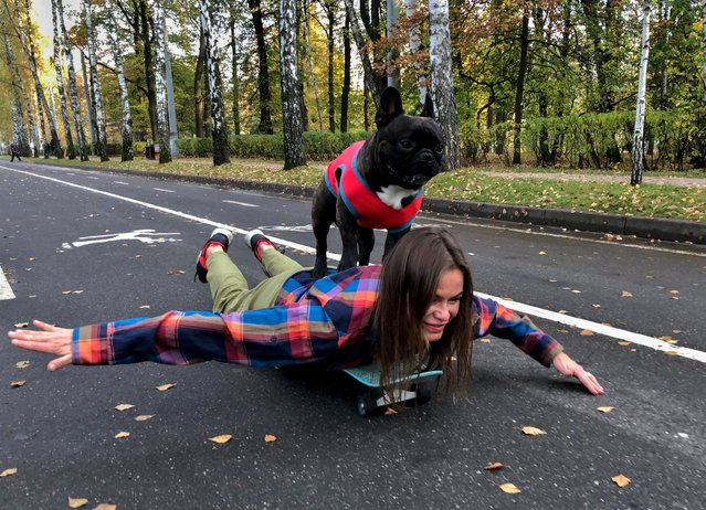 A French Bulldog named Nord Boss stands an the back of his owner Natasha while they skateboard in the Sokolniki Park in Moscow, Russia on October 14, 2020. (Photo by Evgenia Novozhenina/Reuters)