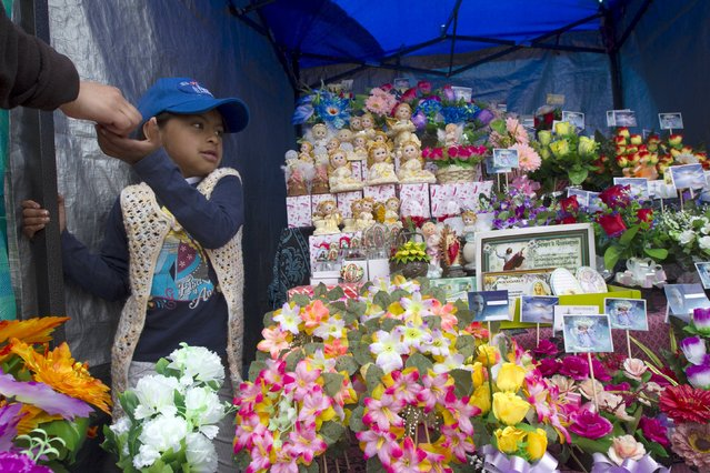 A girl collects payment at a shop outside a cemetery known for its topiary art, during the observance of the Day of the Dead, in Tulcan, Ecuador November 2, 2015. (Photo by Guillermo Granja/Reuters)