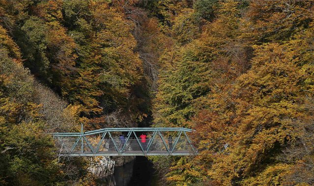 People stop on a bridge to look over the River Garry during an Autumn day near Pitlochry in Scotland, Britain October 22, 2015. (Photo by Russell Cheyne/Reuters)